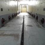 Ripristino esterno vasche enologiche e pavimento presso cantina di Pavia - Prima dei lavori